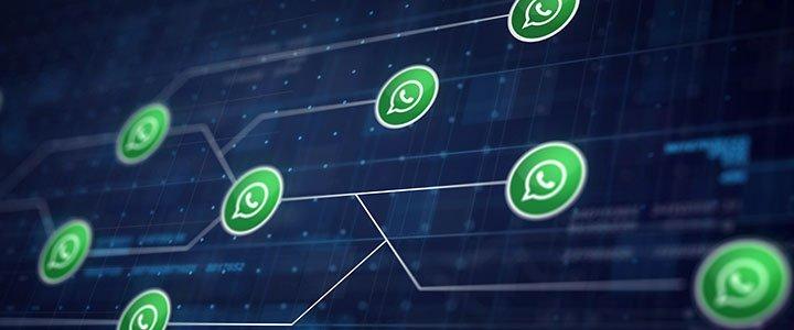 reglas basicas al crear grupos de whatsapp en la escuela
